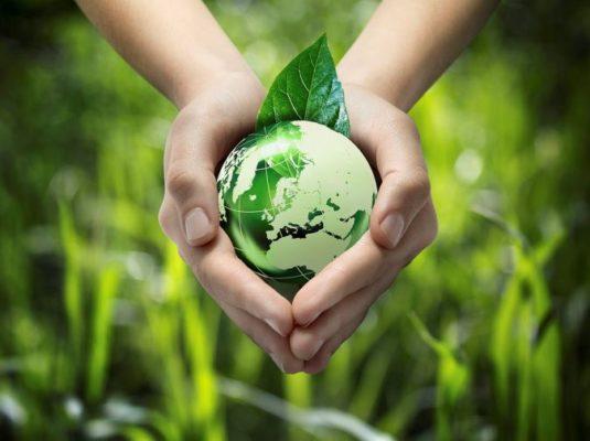 hành động bảo vệ môi trường bằng việc sử dụng ống hút giấy
