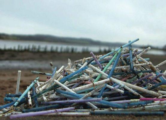 Rác thải từ ống hút nhựa gây ô nhiễm môi trường nặng nề