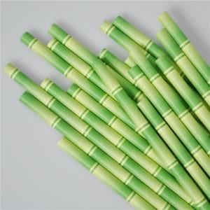 ống hút giấy cây trúc